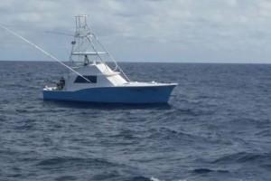 sport-fishing-charters