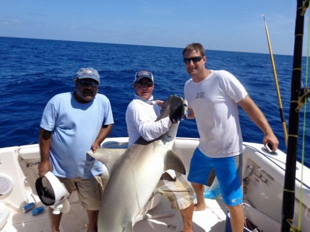 Miami fishing charters luxury deep sea and sportfishing for Miami fishing charters
